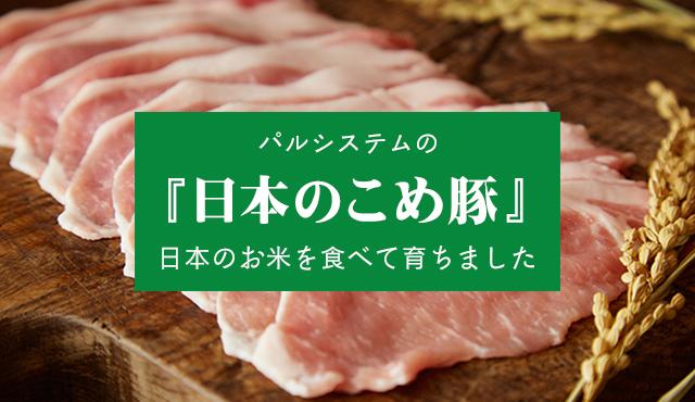 日本のこめ豚